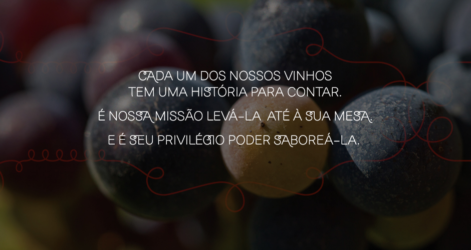 Clube de Vinhos Portugueses em Angola